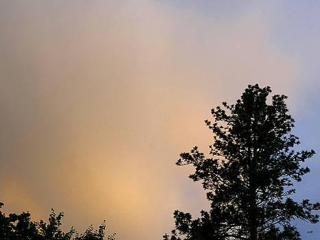 Nightfall Splendor 2 by Will Borden