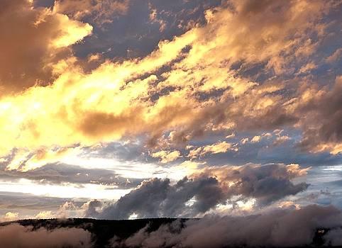Nightfall Splendor 5 by Will Borden
