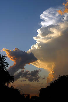 Steve Augustin - Nightly Storm