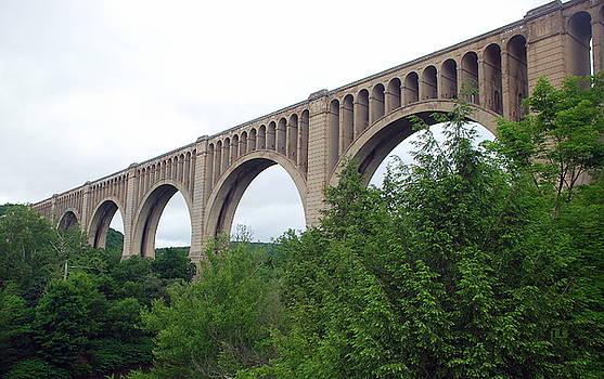 Niicholson Bridge Horizontal Span by June Lambertson