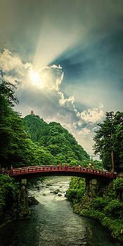 Nikko by Nathan Spotts