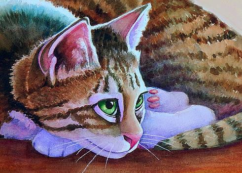 Nikos Sorta Brown Tabby by Rachel Armington