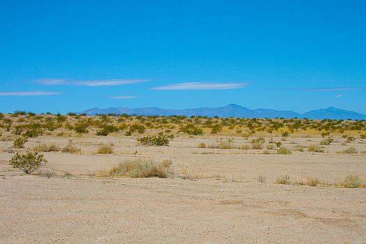 Niland desert by Melisa Fretwell