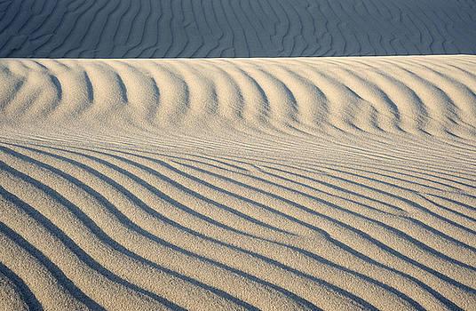 Nipomo Dunes by Ron Hoggard