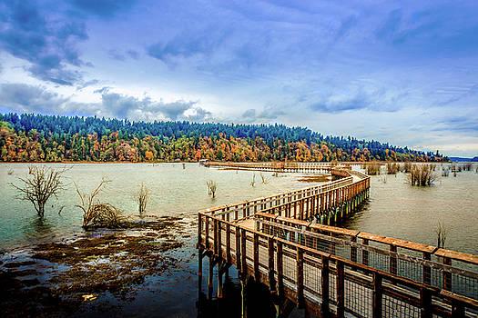 Nisqually Refuge Wetlands Boardwalk  by Barry Jones