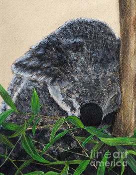Nite, Nite-Koala by Monica Carrell