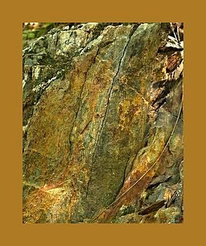 John Feiser - Nixon Geology 6