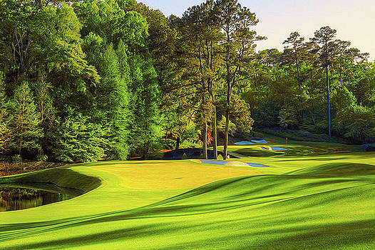 No. 11 White Dogwood 505 yards PAR 4 by Don Kuing