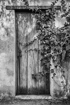 Guy Shultz - No Entrance