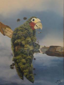 No Hay Flora sin Fauna by Carlos Rodriguez Yorde