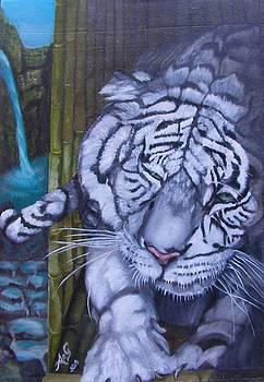 No More Tiger by Alessia Orlandi