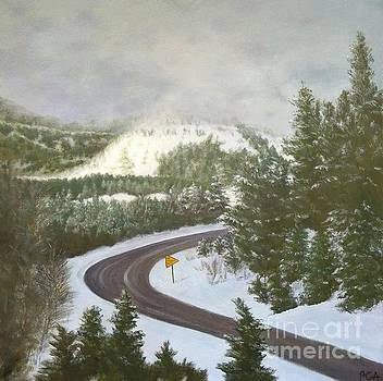 No Passing Zone by Phyllis Andrews