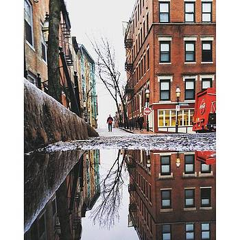 No Reflection On You. #puddlegram by Brian McWilliams