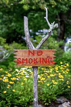 No Smoking by John Haldane