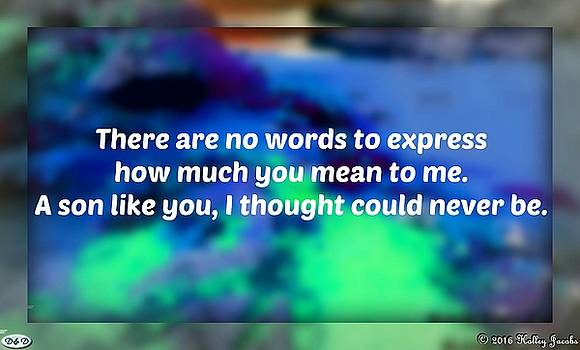 No Words Can Express My Love by Holley Jacobs