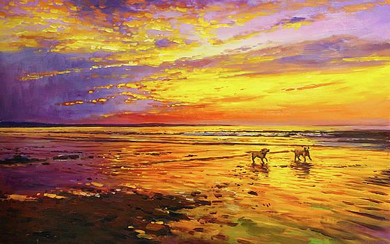 Noah and Harvey On Enniscrone Beach by Conor McGuire