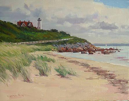 Nobska Lighthouse by Dianne Panarelli Miller