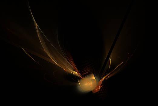 Nocturnal Flight by Ricardo Szekely