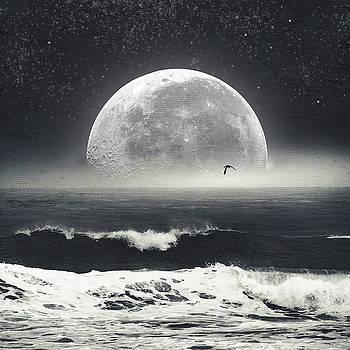 Nocturnal Wave by Dirk Wuestenhagen