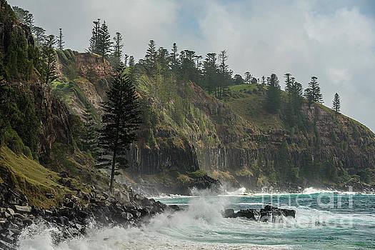 Norfolk Island Coastline 01 by Werner Padarin