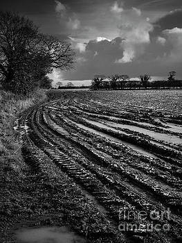 Norfolk Storm by Simon Pocklington