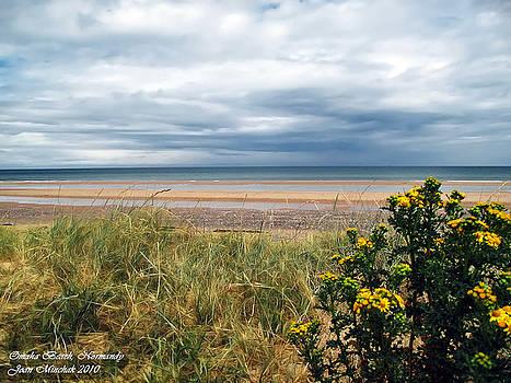 Joan  Minchak - Normandy Beach