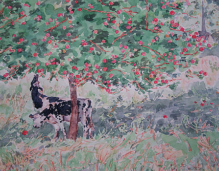 Normandy Cows in Apple Season by Lynn Gimby-Bougerol