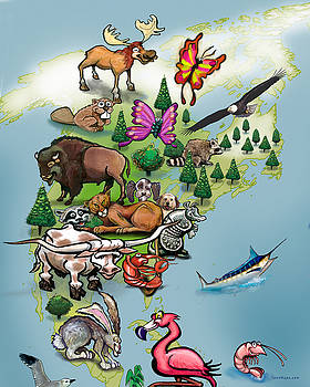North American Animals Map by Kevin Middleton