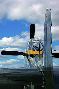 North American P51 Mustang by Paul Wash