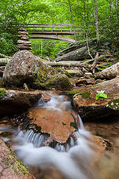 North Carolina Blue Ridge Mountain Lush Summer Stream by Mark VanDyke