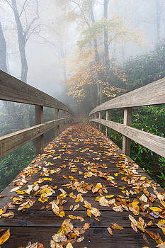 North Carolina Blue Ridge Mountains Autumn Foggy Footbridge by Mark VanDyke