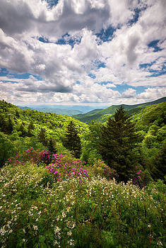 North Carolina Blue Ridge Parkway Scenic Landscape NC Appalachian Mountains by Dave Allen
