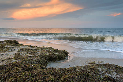 North Carolina Cape Hatteras National Seashore by Mark VanDyke