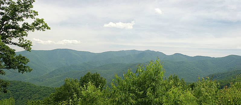 Jill Lang - North Carolina Mountains Panorama