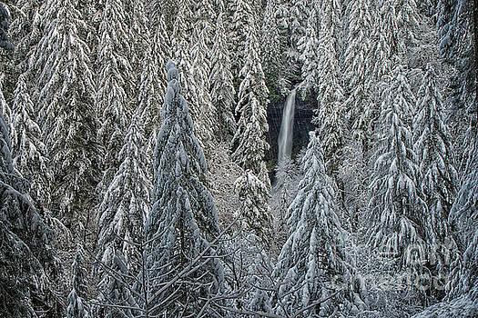 North Falls by Craig Leaper