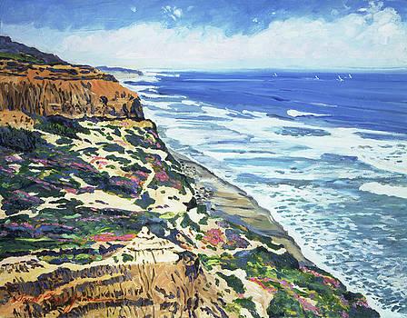North San Diego Coastline by David Lloyd Glover