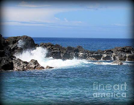North Shore Oahu Surf by Joy Patzner