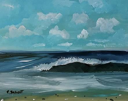 Northeast Atlantic View  by Christina Schott