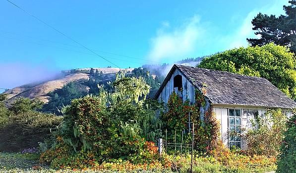 Lisa Dunn - Northern California Cottage
