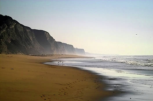 Northern California Shoreline by Kimberly Blom-Roemer