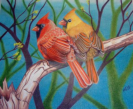 Northern Cardinals by Angela DeRiso