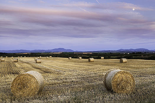 Northern Lakeland View by Stuart Gennery