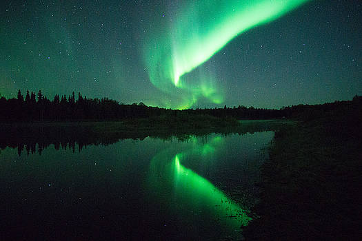 Northern Lights ALASKA by April Bielefeldt
