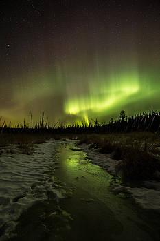 Northern Lights at the Sleeping Giant Provincial Park by Jakub Sisak