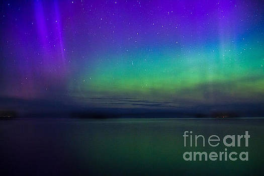 Northern Lights by CJ Benson