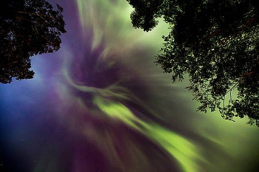 Northern Lights in the CIty Overhead 02 by Jakub Sisak
