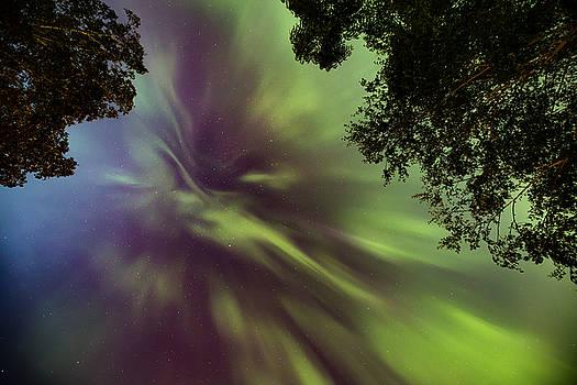 Northern Lights in the CIty Overhead 04 by Jakub Sisak