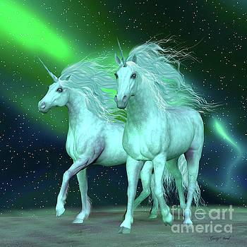Corey Ford - Northern Lights Unicorns