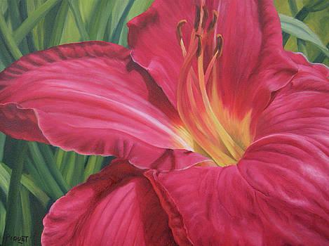 Northern Lily by Rita-Anne Piquet