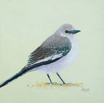 Jan Matson - Northern Mockingbird
